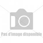 Chatte de parisienne à démonter
